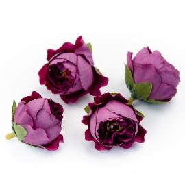 Головки цветов роза пионовидная фиолетовая