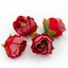 Головки цветов роза пионовидная красная