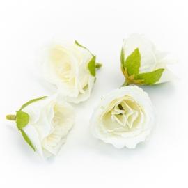 Головки цветов эустома белая