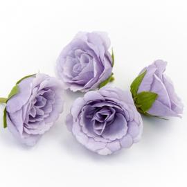Головки квітів еустома бузкова