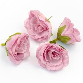 Головки цветов эустома лиловая