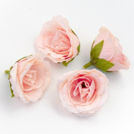 Головки цветов эустома пудровая