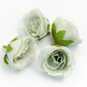 Головки квітів еустома оливкова