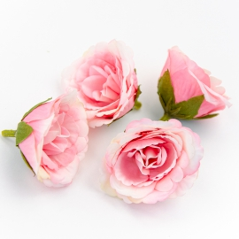 Головки цветов эустома розовая